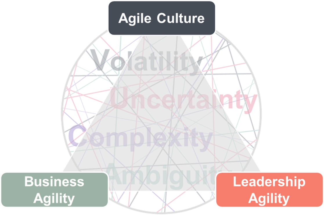 Agile Triangle VUCA Sheppard Moscow.png